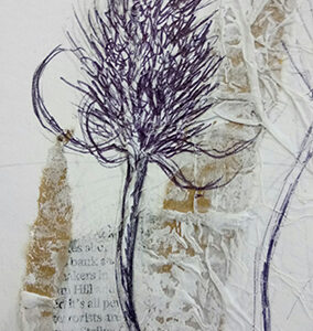 seed heads drawing course